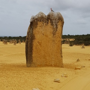 pinnacles-1